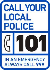 policing 101 logo