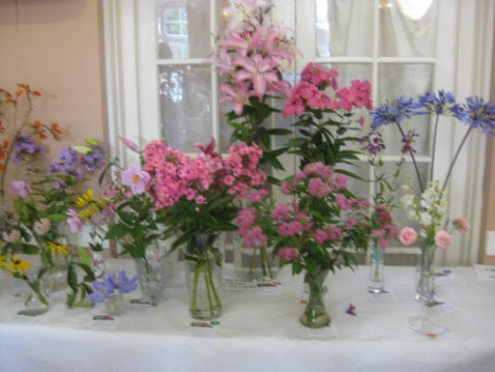 Kingsland Flower Show: Displays at Kingsland Flower Show