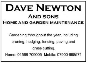 Dave-Newton
