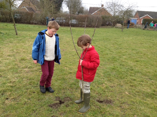 Inspecting holes dug by rabbits