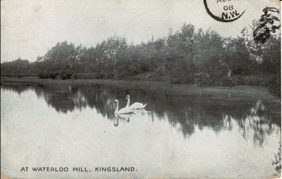 43  At Waterloo Mill; postmarked 1908